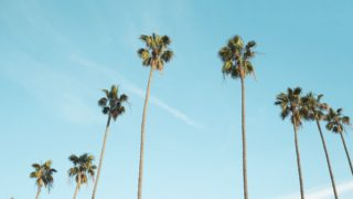 Blog-Mala-de-Viagem-california
