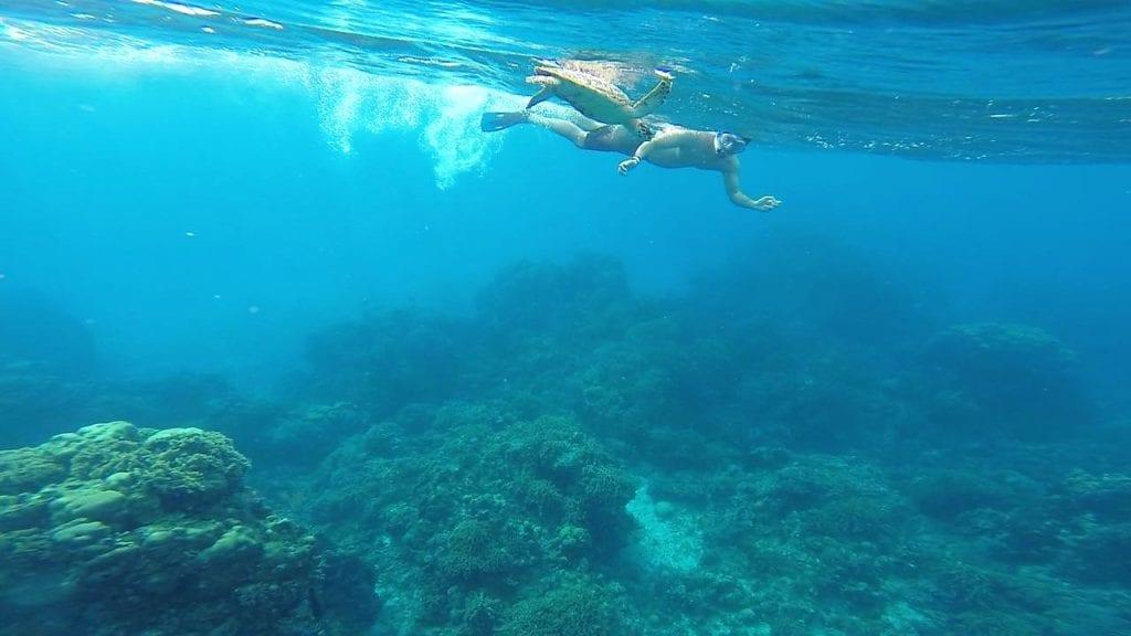 Snorkeling em Cozumel