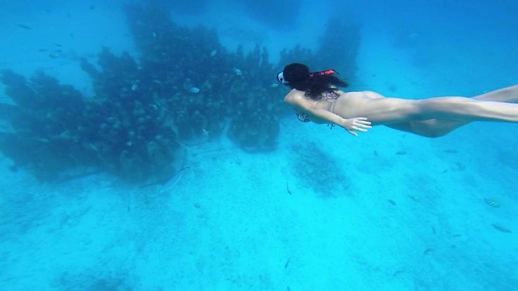Snorkeling no MUSA