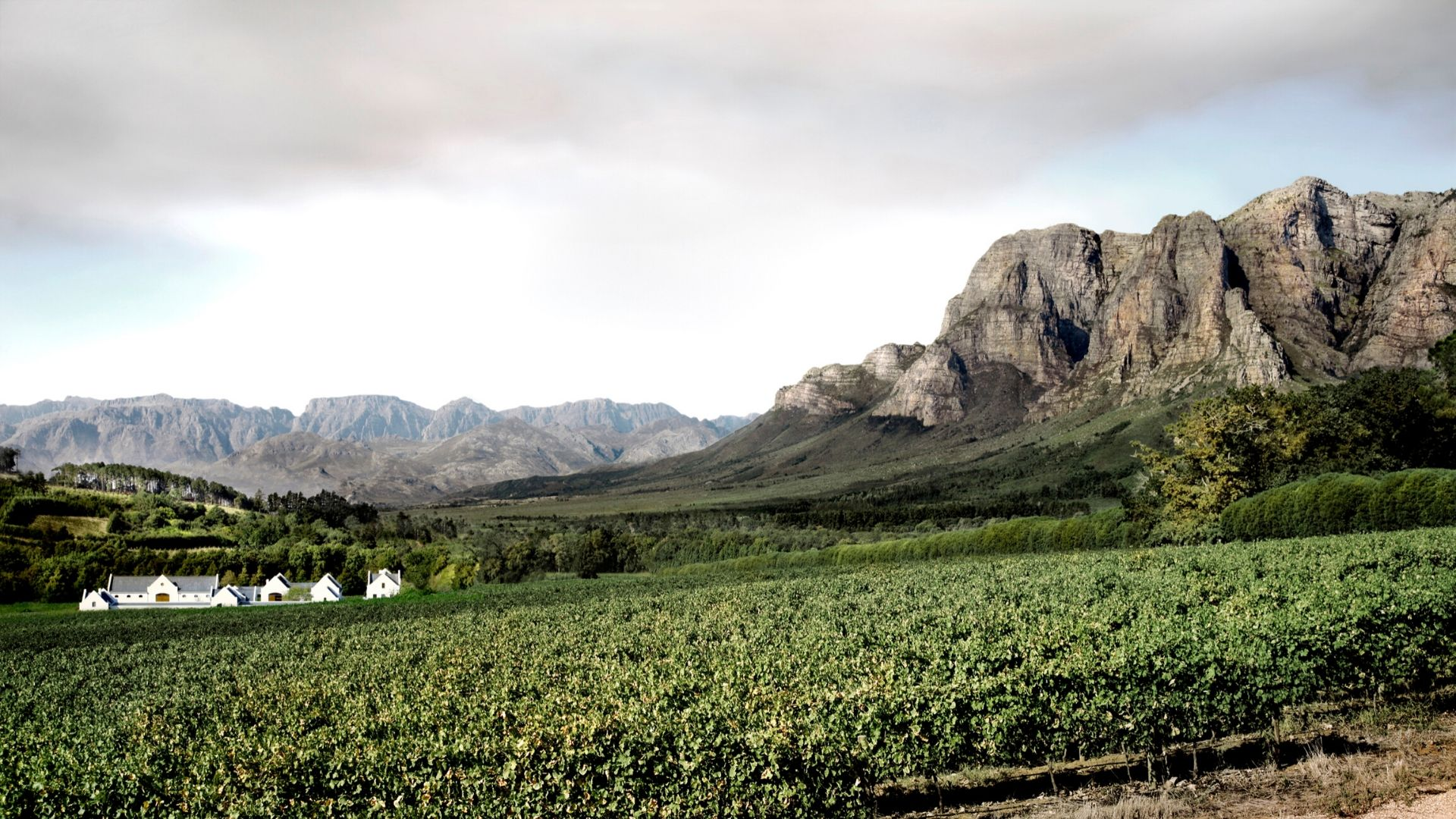 Blog-Mala-de-Viagem-Stellenbosh