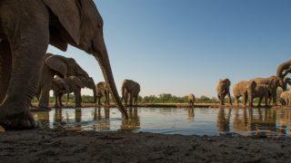 Blog-Mala-de-Viagem-safari