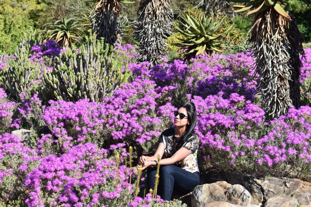 O que fazer na Cidade do Cabo: Kirstenbosh