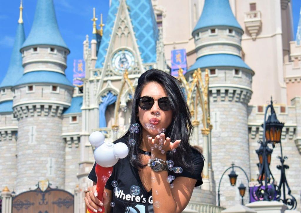 Disney quanto custa