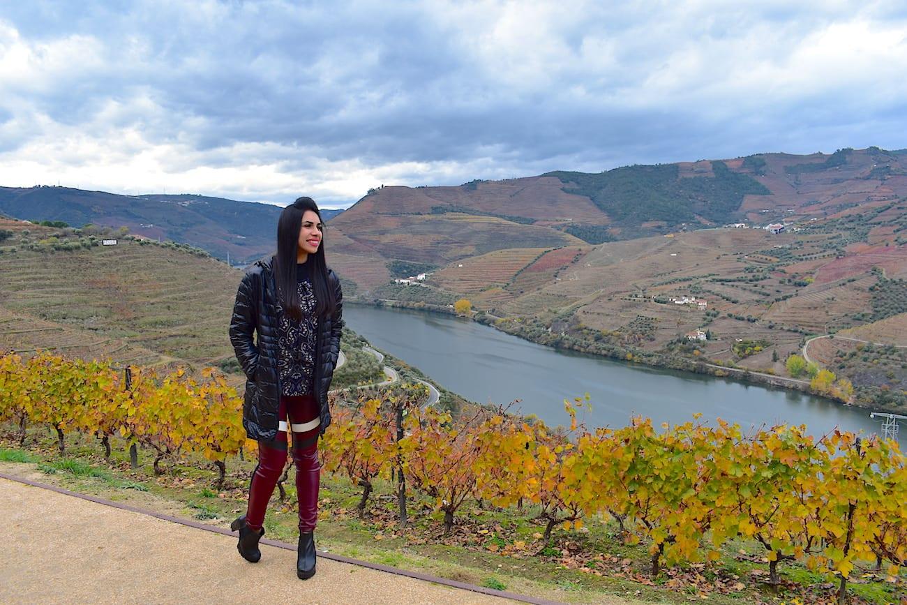 Vista do Vale do Douro a partir da Quinta do Crasto