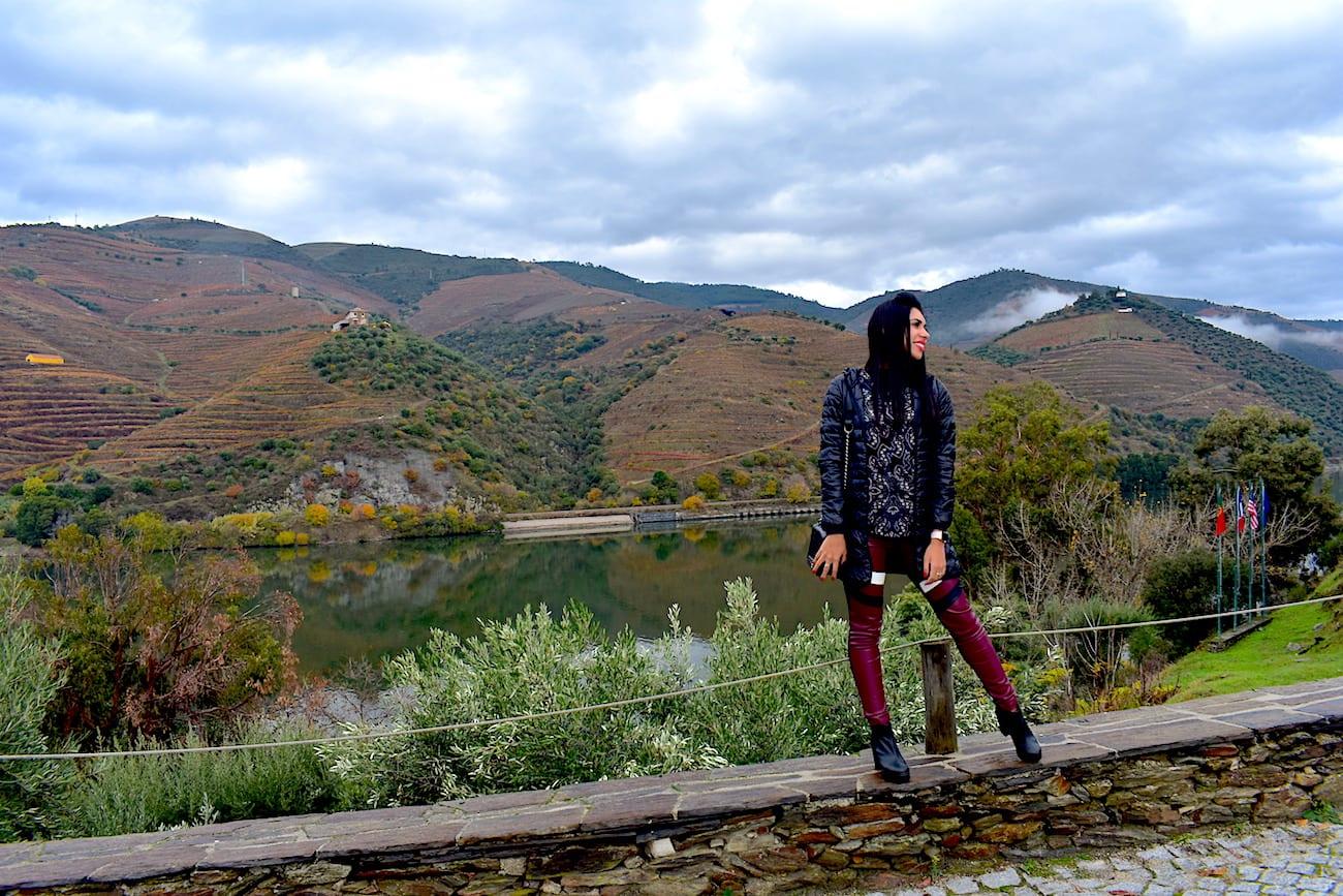 Vista do Vale do Douro a partir da Quinta do Tedo