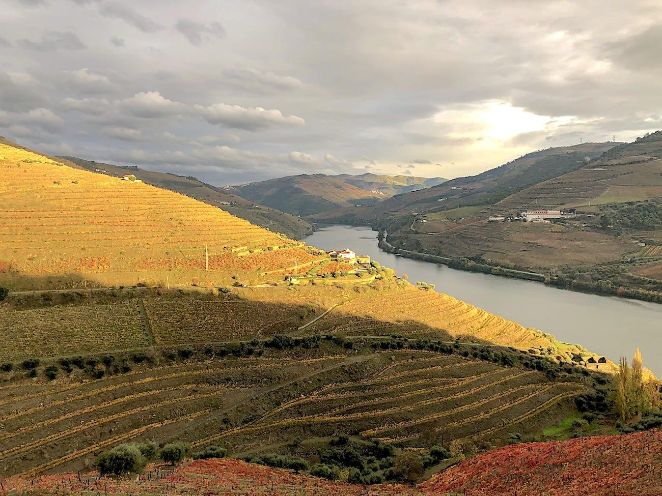 Vale do Douro a partir da Quinta do Crasto | Foto: Anna