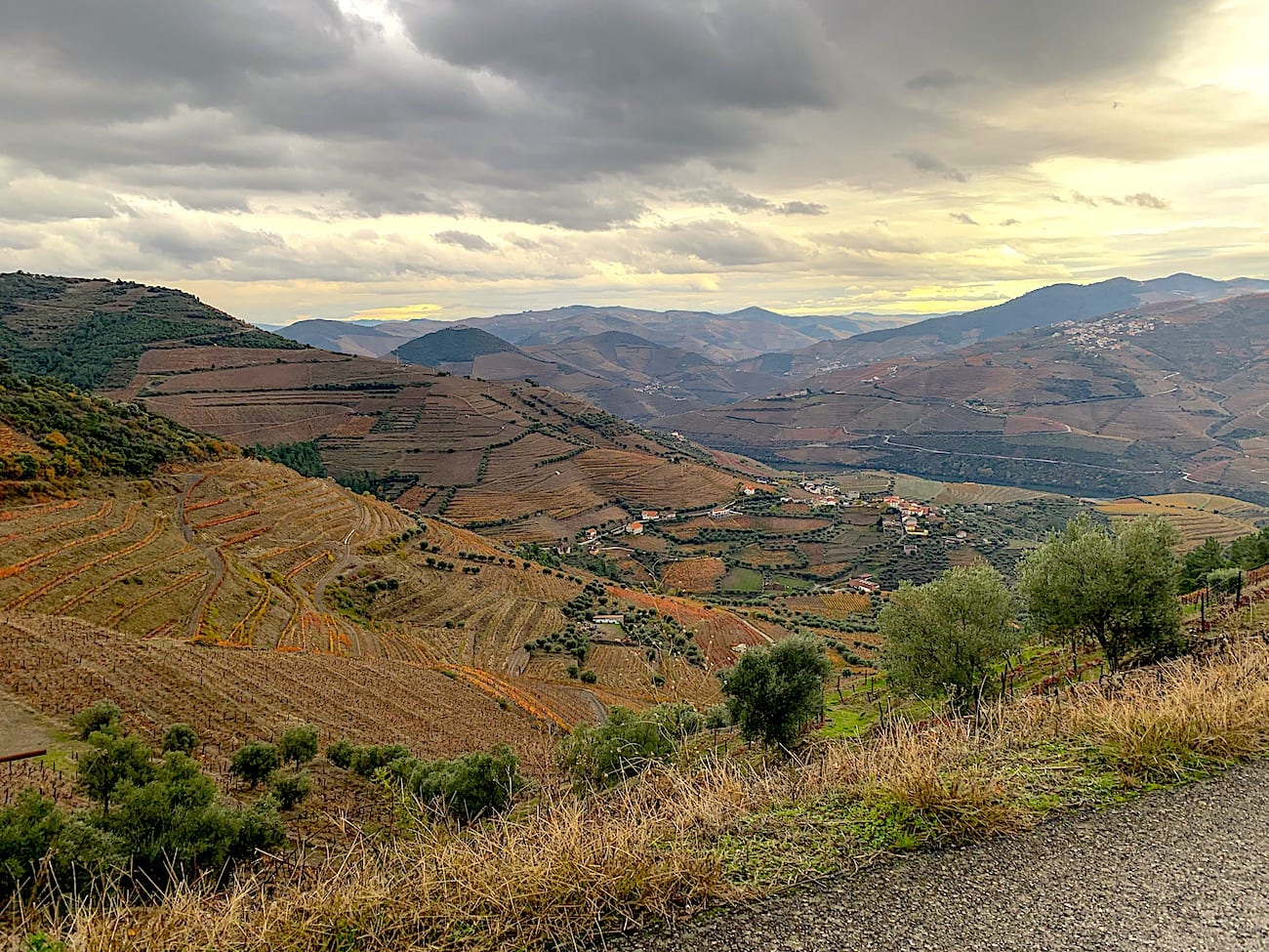 Região vinícola do Douro | Foto: Anna
