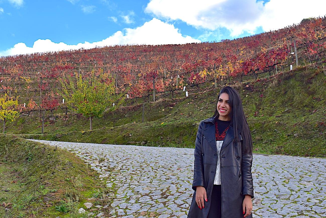 Vale do Douro - Quinta do Vallado | Foto: Anna