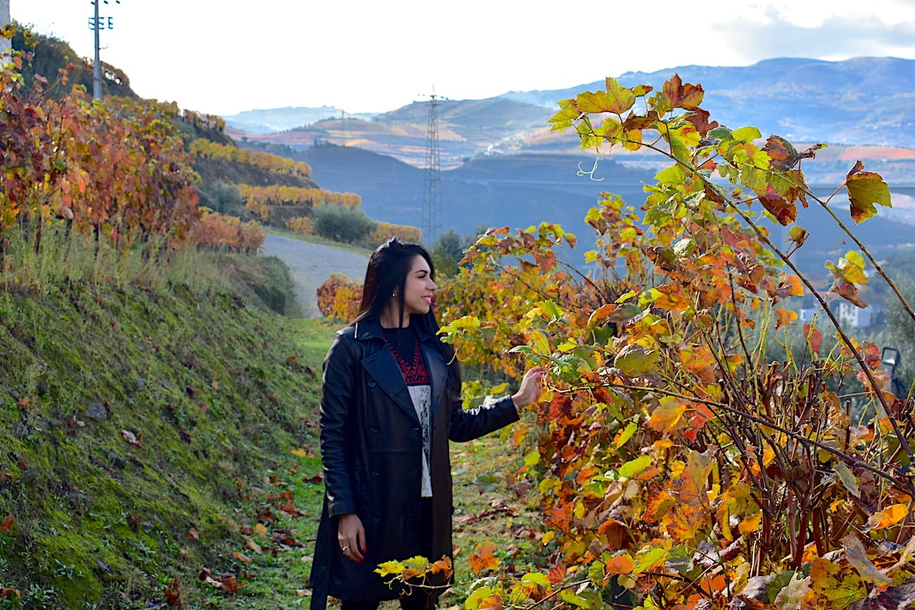 As cores do outono - Quinta do Vallado | Foto: Anna