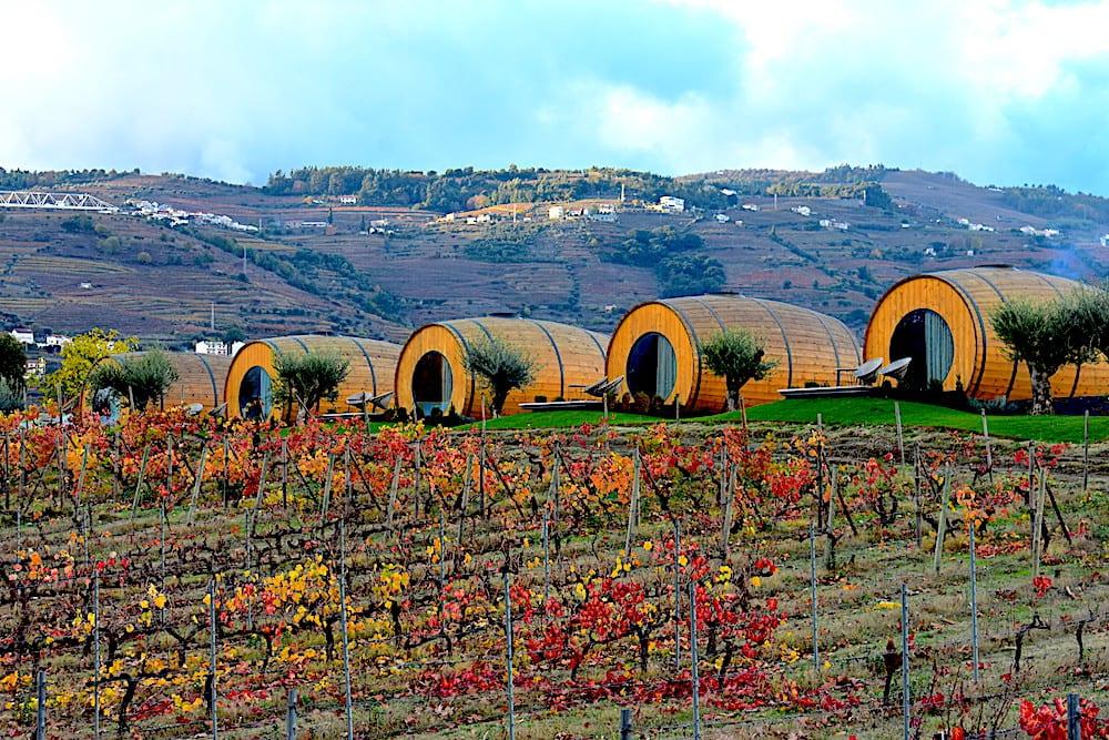 Wine Barrels na Quinta da Pacheca | Foto: Anna